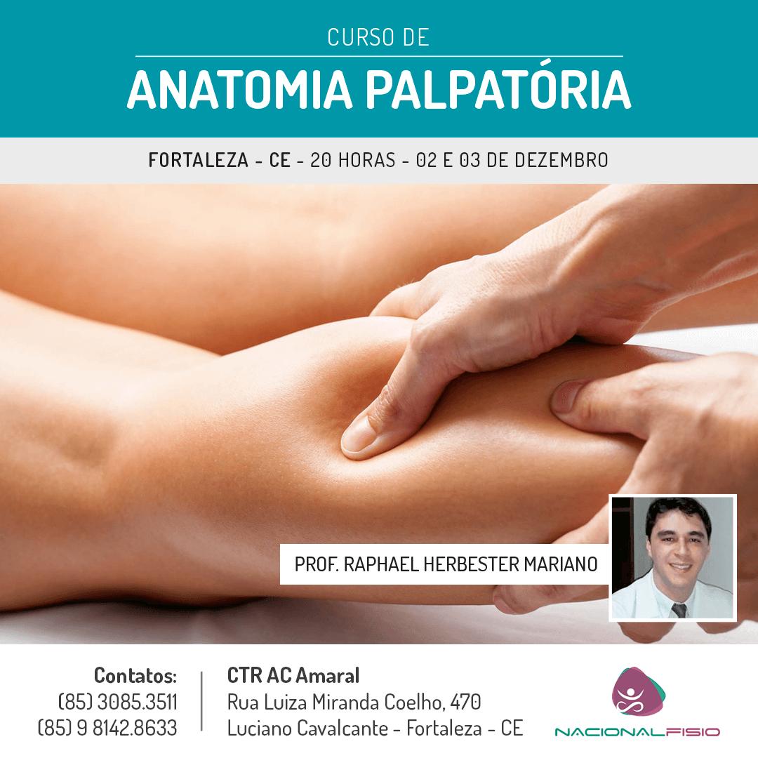 Anatomia-Palpatoria-Fortaleza-Nacionalfisio-oti